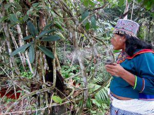 Susret sa šamanima Amazonije